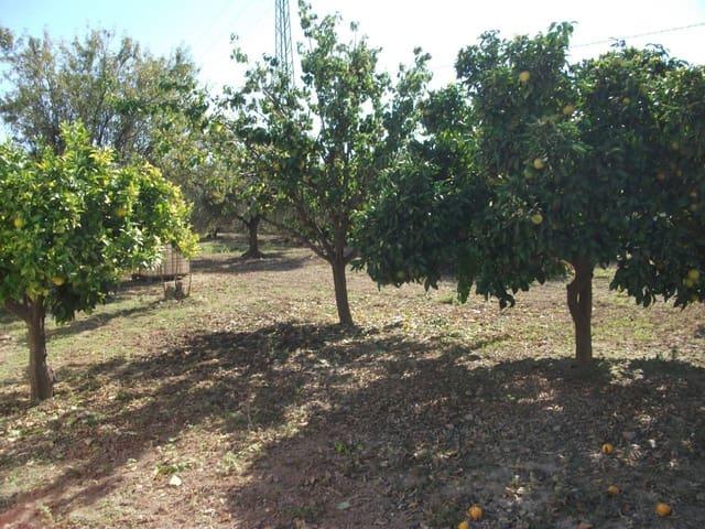 Landgrundstück zu verkaufen in Santaella - 158.000 € (Ref: 4529750)