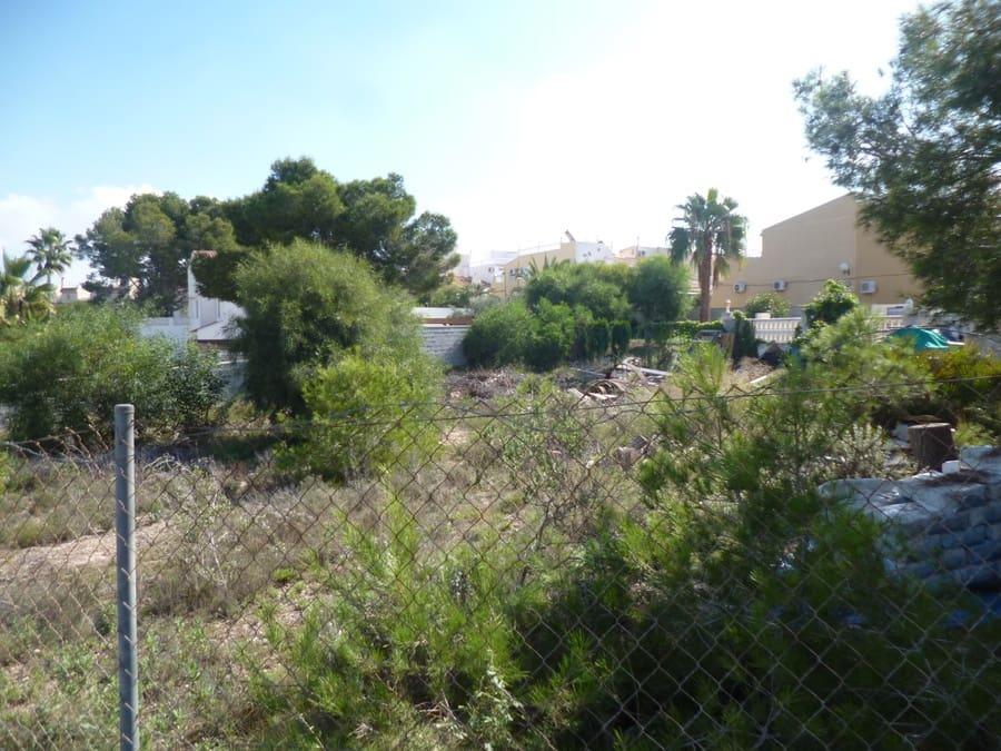 Terreno/Finca Rústica en Playa Flamenca en venta - 160.000 € (Ref: 4960148)