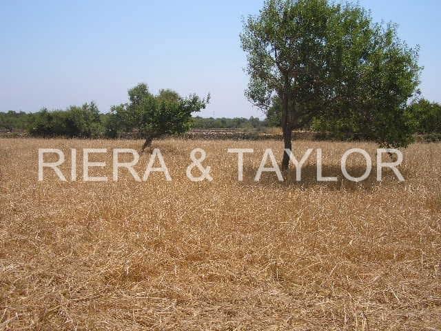 Rakentamaton maa myytävänä paikassa Calonge - 441 000 € (Ref: 2280516)