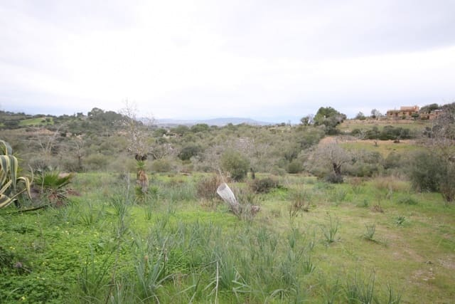 Ubebygd land til salgs i Son Macia - € 188 000 (Ref: 3959955)