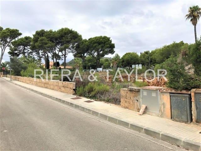 Działka budowlana na sprzedaż w Cala Millor - 503 500 € (Ref: 5491888)