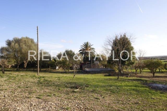 Finca/Casa Rural de 3 habitaciones en María de la Salud / María de la Salut en venta - 300.000 € (Ref: 5739519)