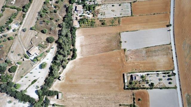 Mark till salu i Sant Joan - 300 000 € (Ref: 5344611)