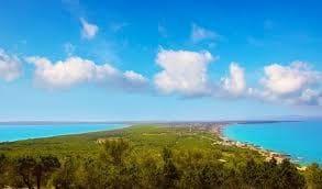 Terrain à Bâtir à vendre à Cap De Barbaria - 950 000 € (Ref: 5340148)