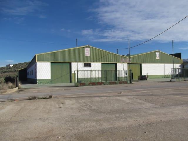 Kommersiell til salgs i Villanueva del Trabuco - € 504 000 (Ref: 5338106)