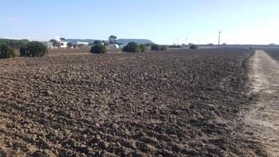 Building Plot for sale in El Palmar - € 300,000 (Ref: 4515197)