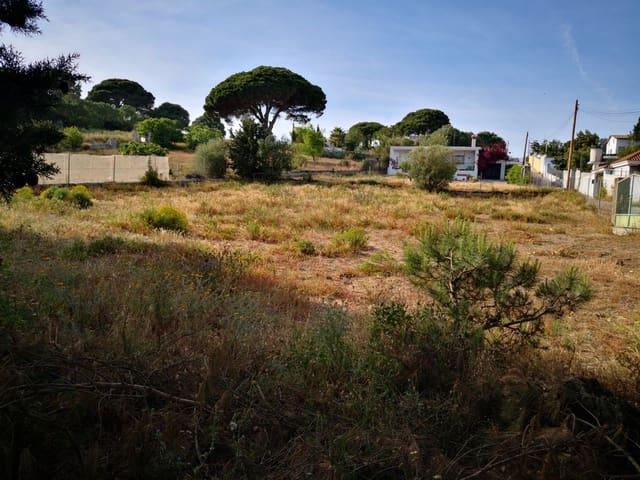 Bauplatz zu verkaufen in San Ambrosio - 87.500 € (Ref: 4637723)