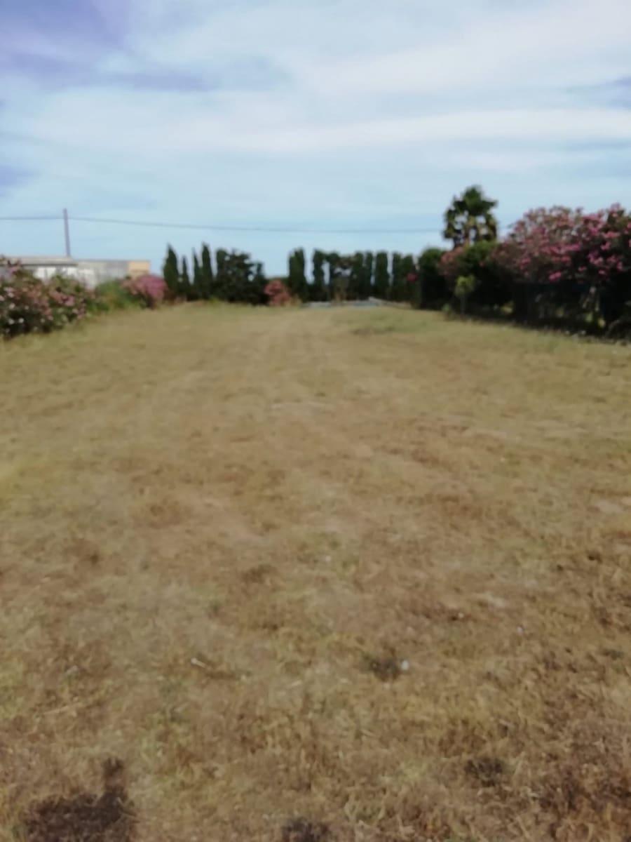 Byggegrund til salg i Vejer de la Frontera - € 59.000 (Ref: 6153904)
