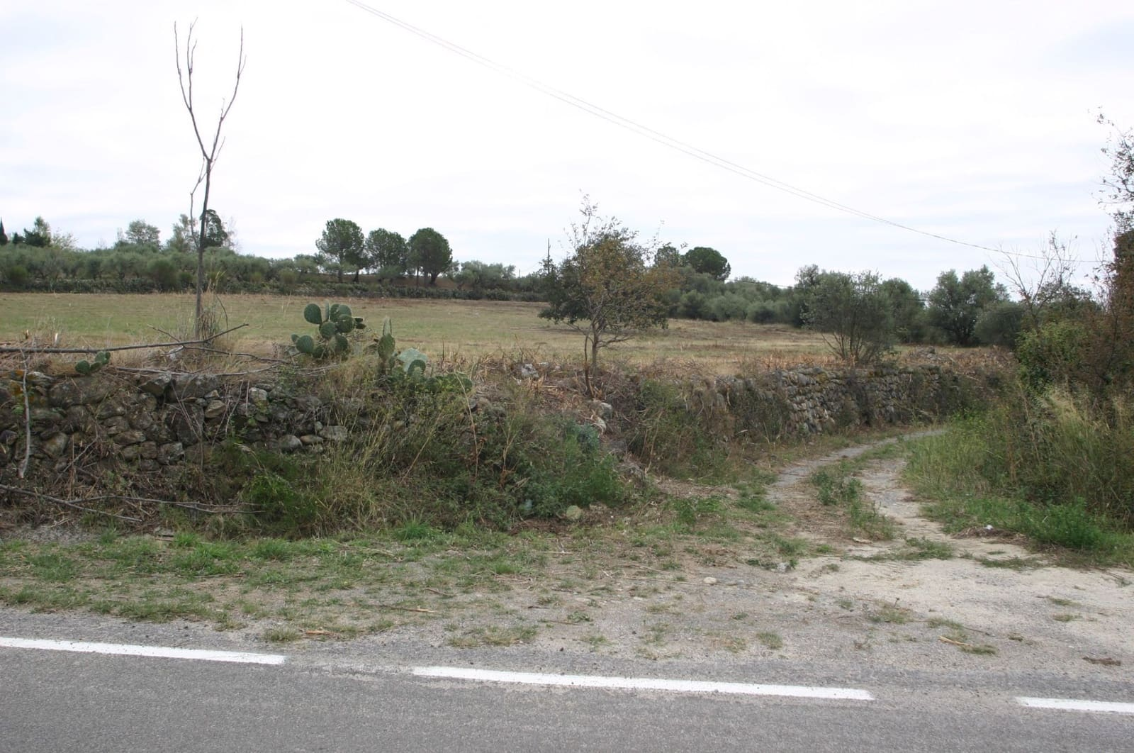 Undeveloped Land for sale in Sant Climent Sescebes - € 800,000 (Ref: 4574701)
