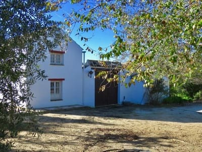 5 bedroom Finca/Country House for sale in Marchena - € 350,000 (Ref: 5455777)