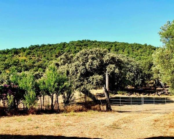 Finca/Casa Rural de 4 habitaciones en La Nava en venta - 525.000 € (Ref: 5455794)