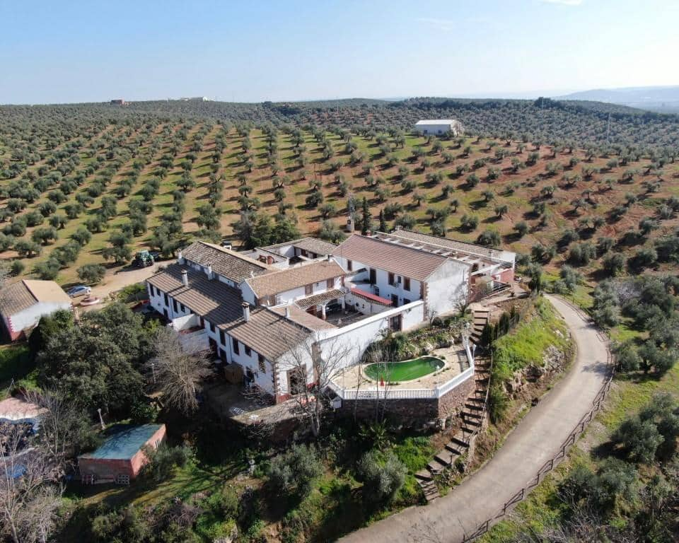 18 sypialnia Komercyjne na sprzedaż w Montoro - 950 000 € (Ref: 5748988)