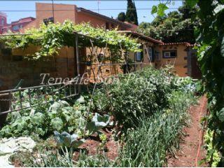 Landgrundstück zu verkaufen in Tacoronte - 210.000 € (Ref: 2298703)
