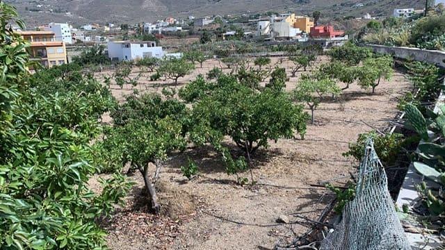 Terreno Não Urbanizado para venda em Valle de San Lorenzo - 160 000 € (Ref: 6123046)