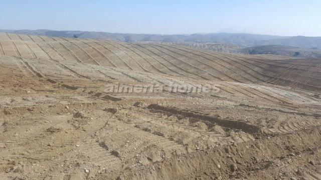 Terreno Non Edificato in vendita in Taberno - 125.000 € (Rif: 4792824)