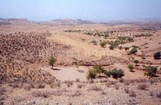 Ubebygd land til salgs i Albox - € 20 000 (Ref: 868555)