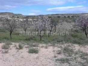 Ubebygd land til salgs i Partaloa - € 14 950 (Ref: 958808)