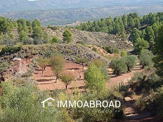 Terreno para Construção para venda em Ayora - 33 000 € (Ref: 3401375)