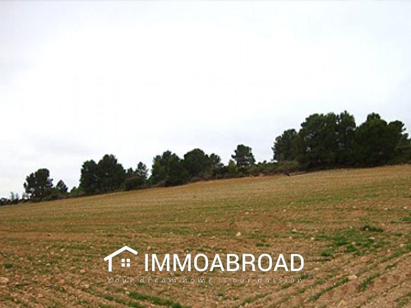 Terreno para Construção para venda em Zarra - 34 000 € (Ref: 3401376)
