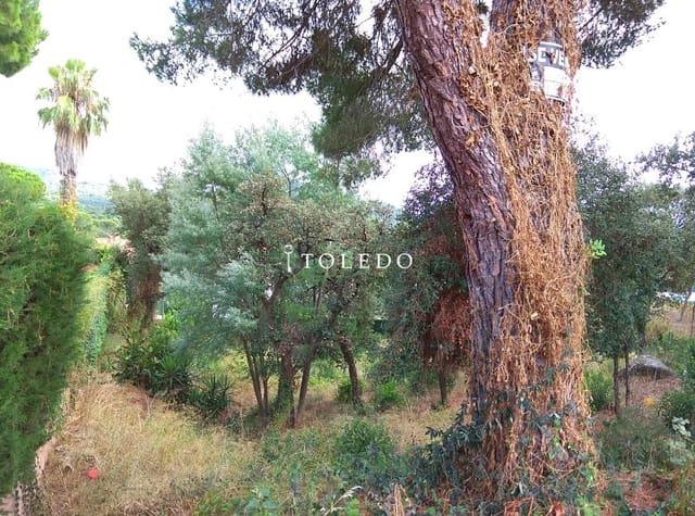 Ubebygd land til salgs i Santa Cristina d'Aro - € 65 000 (Ref: 4101068)
