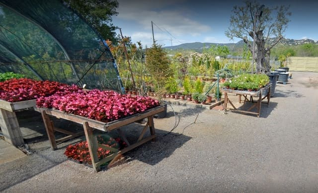 3 soverom Bedrift til leie i Santa Cristina d'Aro - € 2 200 (Ref: 6066125)