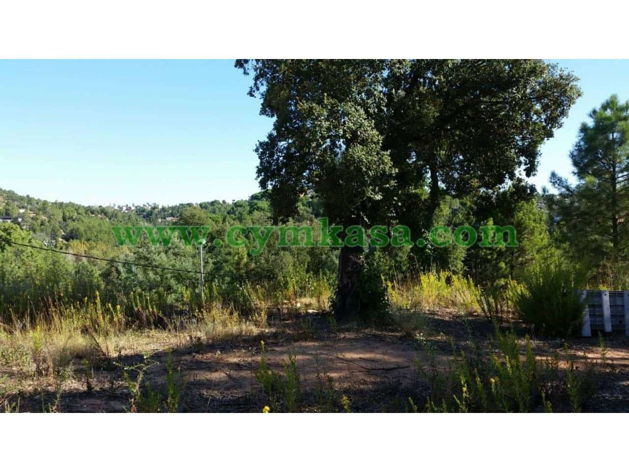 Terreno Non Edificato in vendita in Riudarenes - 25.000 € (Rif: 5069543)
