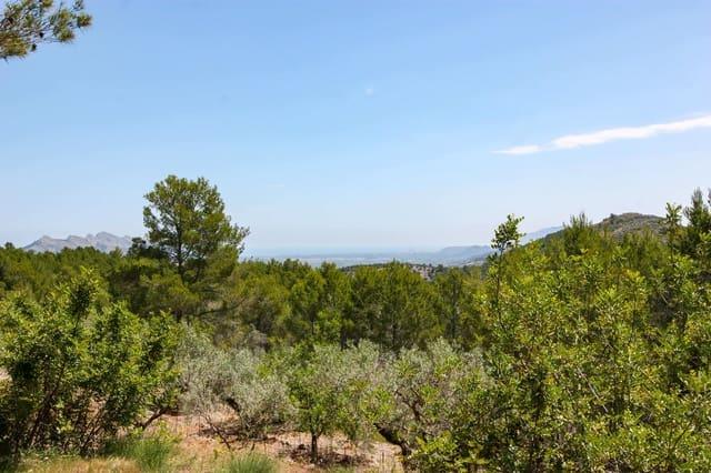 Terrain à Bâtir à vendre à Vall de Laguart - 129 900 € (Ref: 4913691)