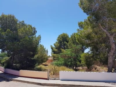 Undeveloped Land for sale in Algorfa - € 130,000 (Ref: 5420712)