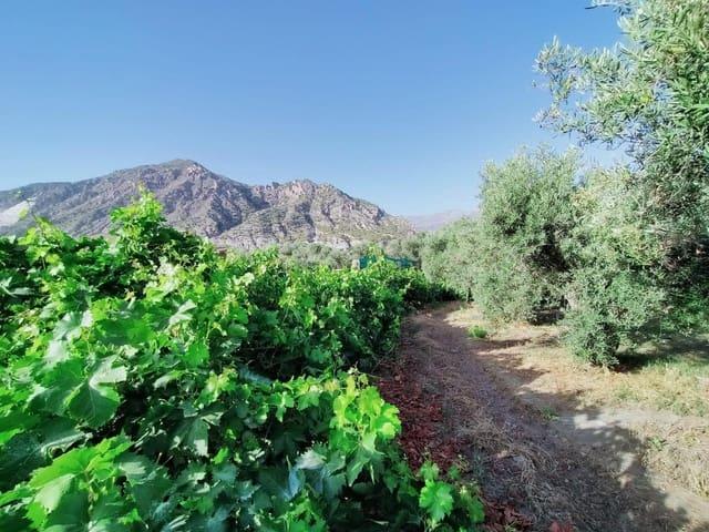 Ubebygd land til salgs i Niguelas - € 80 000 (Ref: 5428841)