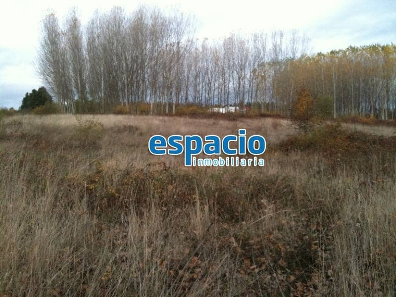 Działka budowlana na sprzedaż w Cubillos del Sil - 58 000 € (Ref: 1729869)