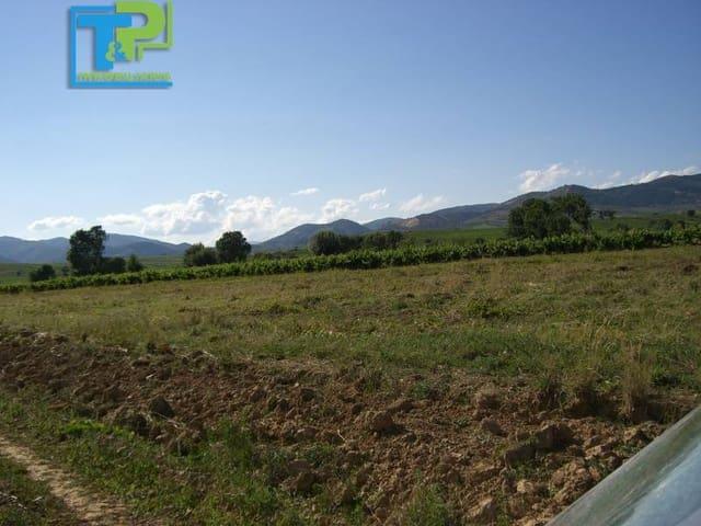 Solar/Parcela en Villadecanes en venta - 38.000 € (Ref: 1729934)