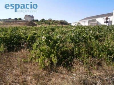 Bauplatz zu verkaufen in Cabanas Raras - 35.000 € (Ref: 2156464)