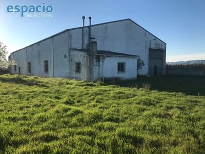 Business for sale in Carracedelo - € 200,000 (Ref: 3604552)