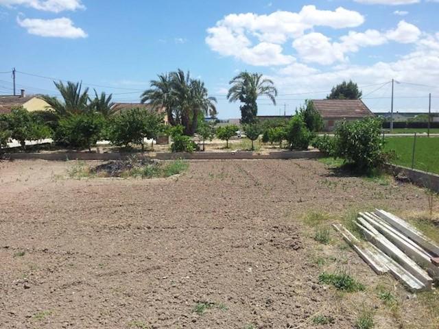 Ubebygd land til salgs i Dolores - € 69 000 (Ref: 3608763)