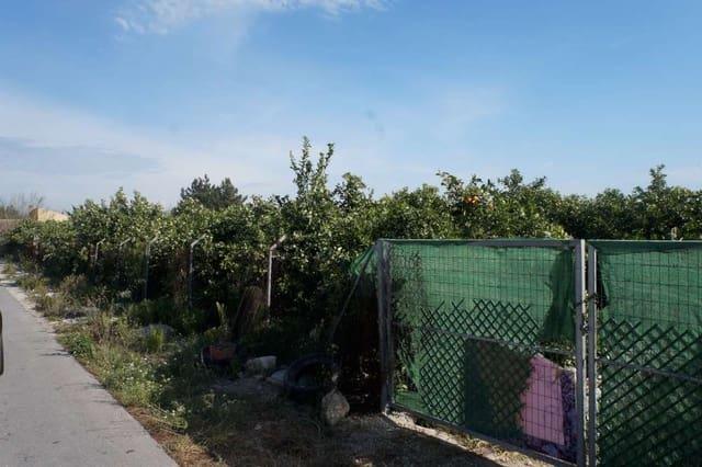 Ubebygd land til salgs i Almoradi - € 36 000 (Ref: 5167413)