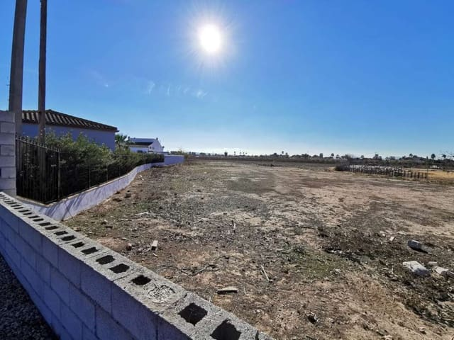 Undeveloped Land for sale in Catral - € 90,000 (Ref: 5803064)