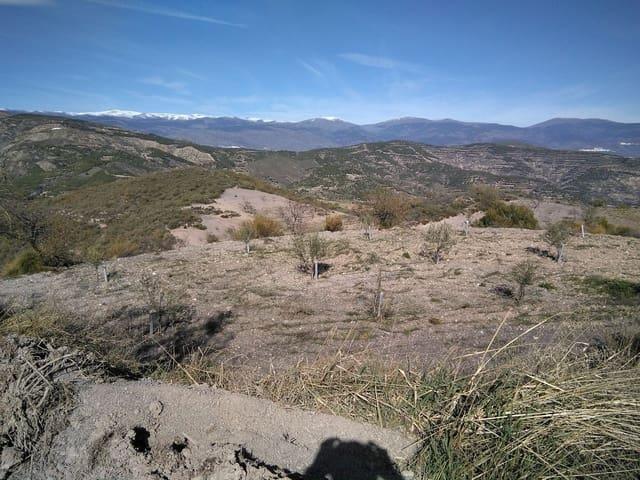 Terreno Não Urbanizado para venda em Turon - 16 500 € (Ref: 4580705)