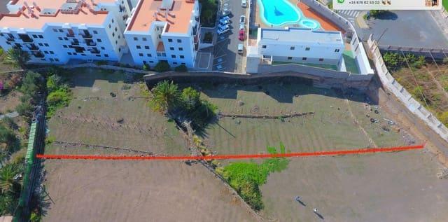 Terre non Aménagée à vendre à Agaete - 50 000 € (Ref: 5047475)
