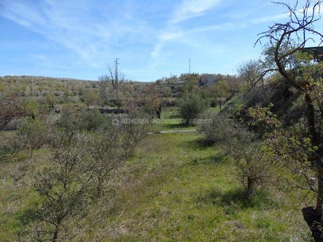Terreno Não Urbanizado para venda em Oria - 29 950 € (Ref: 3907132)