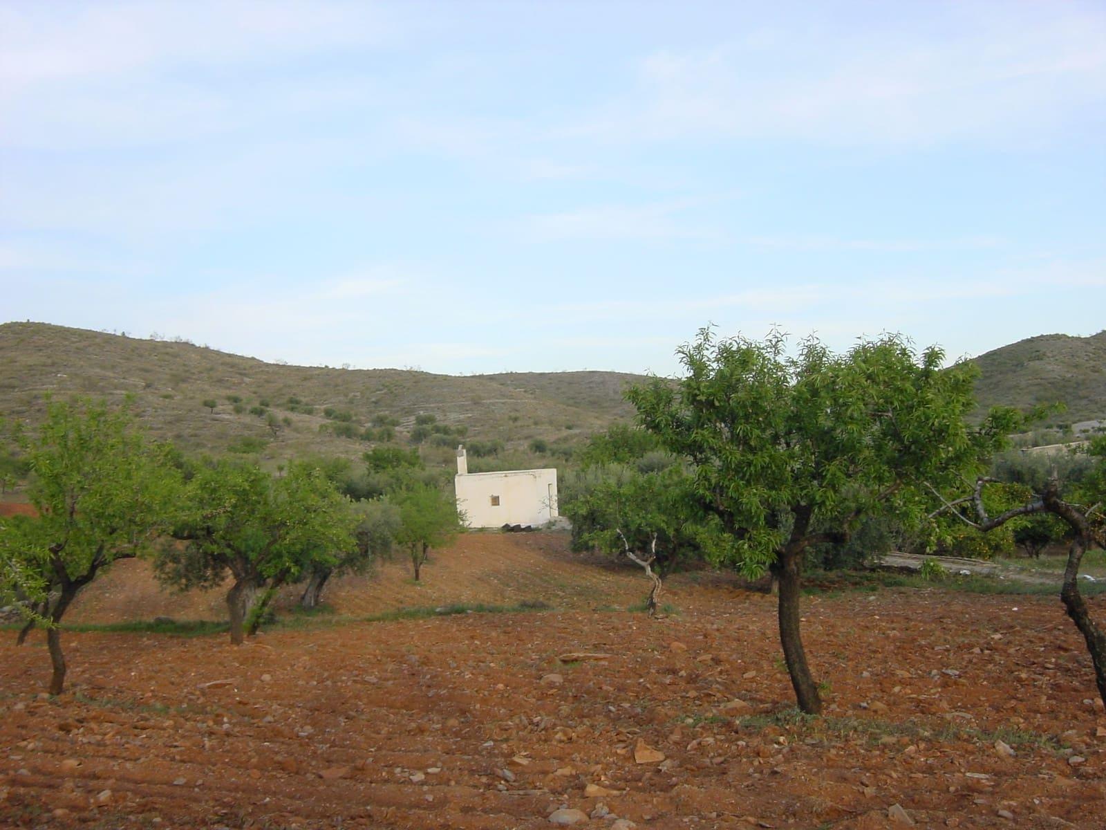 Terreno/Finca Rústica en Uleila del Campo en venta - 26.000 € (Ref: 4450003)