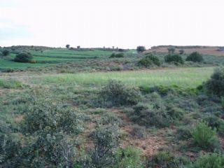 Landgrundstück zu verkaufen in Arcos de Jalon - 5.500 € (Ref: 1696711)