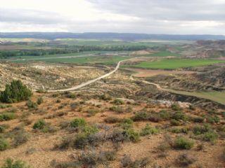 Terre non Aménagée à vendre à Arcos de Jalon - 10 000 € (Ref: 1697176)
