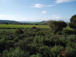 Undeveloped Land for sale in Arcos de Jalon - € 6,000 (Ref: 1697177)
