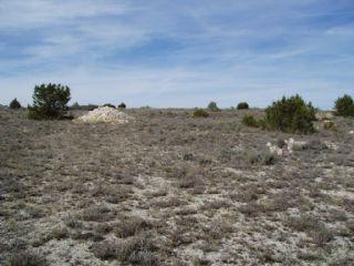 Terre non Aménagée à vendre à San Esteban de Gormaz - 5 000 € (Ref: 1887614)