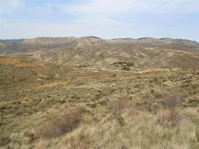 Undeveloped Land for sale in Utrillas - € 6,000 (Ref: 2628556)