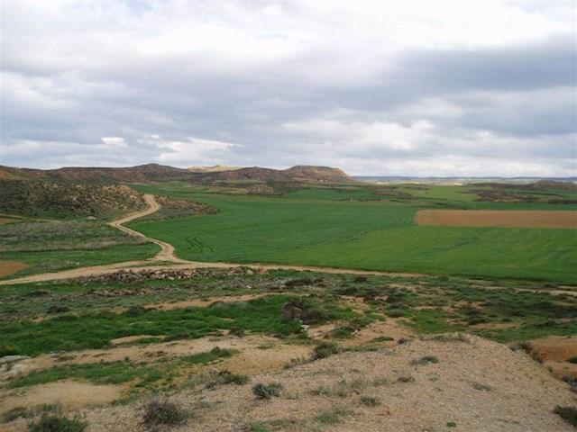 Terre non Aménagée à vendre à Arcos de Jalon - 6 000 € (Ref: 3555632)