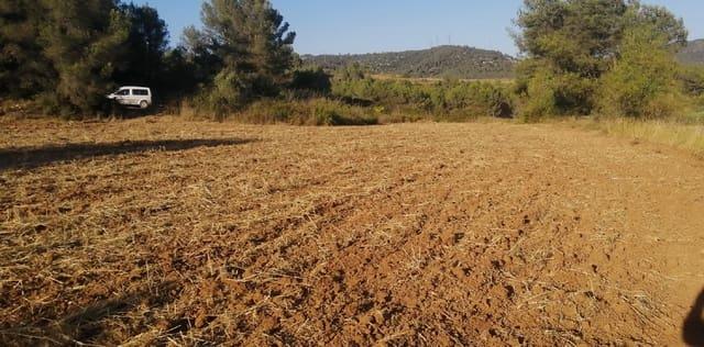 Quinta/Casa Rural para venda em Olesa de Bonesvalls - 34 000 € (Ref: 6223123)