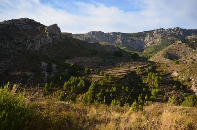 Undeveloped Land for sale in Confrides - € 70,000 (Ref: 6166473)