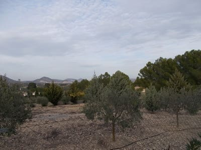 Undeveloped Land for sale in Caudete - € 39,000 (Ref: 4947236)