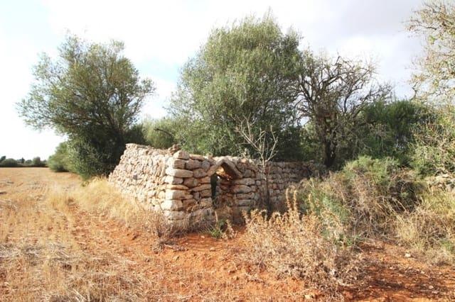 Terre non Aménagée à vendre à Felanitx - 160 000 € (Ref: 4265028)
